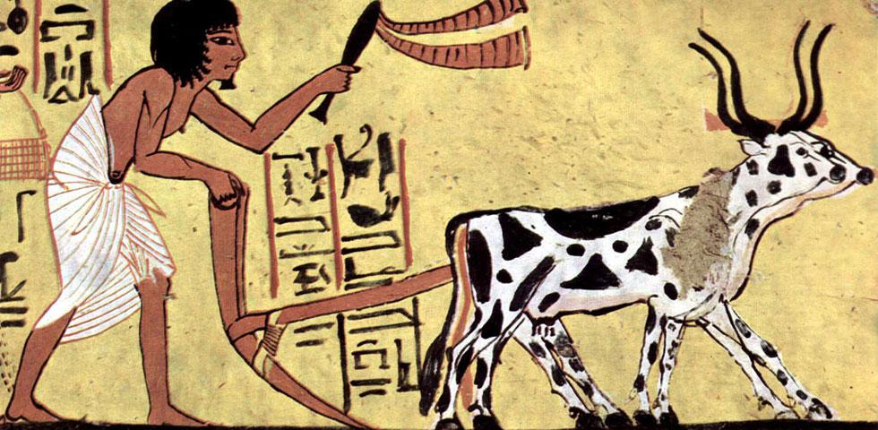 Geschichte der Permakultur